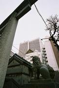Hisakunikoma